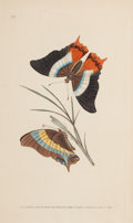 Prints, A SET OF SIX FRAMED ENGLISH HAND COLORED ENGRAVINGS OF BUTTERFLIES AFTER DONOVAN . Edward Donovan (British, 1768-1837). Publ... (Total: 6 Items)