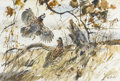 Paintings, MCGLAUSKY (Twentieth Century). Untitled, (Pheasants in a field). Watercolor on paper. 15in. x 22in.. ...