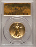 Modern Bullion Coins, 2009 $20 Ultra High Relief MS69 PCGS. Ex: Double Eagle. PCGSPopulation (5113/5507). NGC Census: (0/0). Numismedia Wsl. Pr...