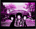 Music Memorabilia:Photos, Jimi Hendrix Rare Experience at the Royal Albert Hall 1969Limited Edition Photo....