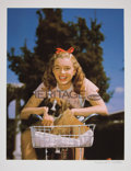 Movie/TV Memorabilia:Photos, Marilyn Monroe Puppy in Basket Limited Edition Digital Printby Richard C. Miller....