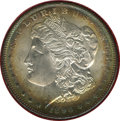 1896 $1 MS66 ★ NGC. Ex: Redfield Collection. NGC Census: (563/52). PCGS Population (678/28). Mintage: 9,976,762. Numisme...