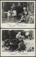 "Movie Posters:Adventure, The Son of the Sheik (United Artists, R-1940s). Australian LobbyCards (2) (11"" X 14""). Adventure.. ... (Total: 2 Items)"