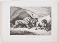 Antiques:Posters & Prints, Seven Wonderful Etched Plates of Animals From Howitt's Groups of Animals. London: Edward Orme, 1811. Light tonin... (Total: 7 Items)