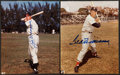 Baseball Collectibles:Photos, Joe DiMaggio and Ted Williams Signed Photographs Lot of 2....