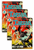Bronze Age (1970-1979):Adventure, Tarzan #209 Group (DC, 1972) Condition: Average NM.... (Total: 16 Comic Books)