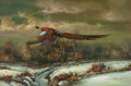American:Sporting, M.P. ELLIOTT (American, b. 1900). Pheasant Flying, circa1960. Oil on canvas. 24 x 36 inches (61.0 x 91.4 cm). Signed lo...