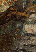 HOWARD NOTMAN (American, 1881-1964) Under the Cedars, 1914 oil on canvas 20 x 14 inches (50.8 x 3