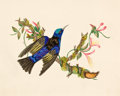 Decorative Prints, European:Prints, A FRAMED SET OF FOUR WATER COLORS OF BIRD, BUTTERFLY, TULIP ANDPASSION FLOWER . 19th century. 7-3/4 x 9-1/2 inches (19.7 x ...(Total: 4 Items)