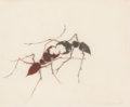 Post-War & Contemporary:Contemporary, FROM THE ESTATE OF DR. EDMUND P. PILLSBURY. JOHN ALEXANDER(American, b. 1945). Fighting Ants, 1997. Pencil on paper....