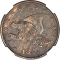 Patterns, 1855 P1C Flying Eagle Cent, Judd-168 Original, Pollock-193, R.4,PR61 Brown NGC....