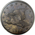 Patterns, 1855 P1C Flying Eagle Cent, Judd-167 Original, Pollock-193, R.5,PR63 Brown NGC....