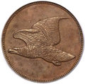 Patterns, 1856 P1C Flying Eagle Cent, Judd-179, Pollock-207, Low R.7, PR65 Brown PCGS....