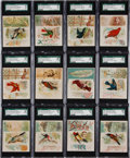"Non-Sport Cards:Sets, 1887 N42 Allen & Ginter ""Song Birds of The World"" Complete Set(50) - #1 on the SGC Set Registry!..."