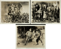 """The Wizard of Oz (MGM, 1939). Photos (3) (8"""" X 10""""). ... (Total: 3 Items)"""