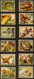 "Non-Sport Cards:Sets, 1950 R714-2 Topps Frank Buck ""Bring 'Em Back Alive"" Complete Set(100) Plus Wrapper. ..."