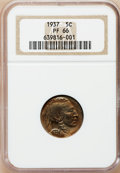 Proof Buffalo Nickels: , 1937 5C PR66 NGC. NGC Census: (475/348). PCGS Population (735/393).Mintage: 5,769. Numismedia Wsl. Price for problem free ...