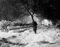 Photographs:20th Century, NAT FEIN (American, 1914-2000). Untitled (A Walk in theSnow), circa 1948. Gelatin silver, printed later. 9-1/2 x 12inc...