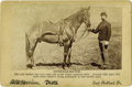 Photography:Cabinet Photos, ONLY SURVIVOR LITTLE BIGHORN SURVIVOR COMANCHE. Ridden by CaptainMyles Keogh into the fray, Comanche is famed for being the...(Total: 1 Item)