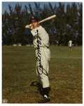 Autographs:Photos, Joe DiMaggio Signed Photograph. Elegant application of Joe D'scoveted signature resides on the surface of the attractive 8...