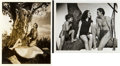 "Movie Posters:Adventure, Tarzan Lot (MGM, 1939-1941). Photos (2) (8"" X 10"").. ... (Total: 2Items)"