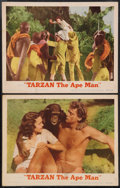 "Movie Posters:Adventure, Tarzan the Ape Man (MGM, R-1954). Lobby Cards (2) (11"" X 14"").Adventure.. ... (Total: 2 Items)"