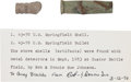 Military & Patriotic:Indian Wars, Little Bighorn Battlefield Artifacts. ... (Total: 2 Items)