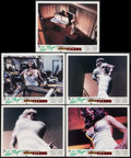 """Movie Posters:Sexploitation, Beneath the Valley of the Ultra-Vixens (RM Films, 1979). SpanishLobby Cards (5) (9.5"""" X 11.75""""). Sexploitation.. ... (Total: 5Items)"""