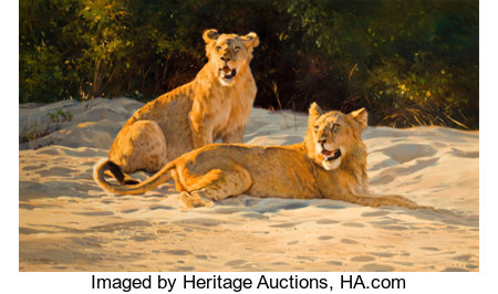 DINO PARAVANO (Italian/American, b. 1935) Morning Light - Young Lions, 1992 Oil on canvas 24 x 40 inches (61.0 x 101....