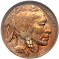 Buffalo Nickels, 1916 5C Doubled Die Obverse MS64 NGC. FS-101....