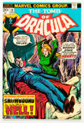 Bronze Age (1970-1979):Horror, Tomb of Dracula #19 (Marvel, 1974) Condition: VF/NM....