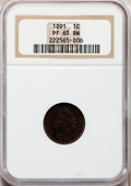 Proof Indian Cents: , 1891 1C PR65 Brown NGC. NGC Census: (13/7). PCGS Population (8/0).Mintage: 2,350. Numismedia Wsl. Price for problem free N...