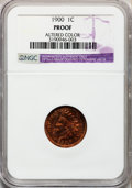 Proof Indian Cents, 1900 1C -- Altered Surfaces -- NGC Details. Proof. NGC Census:(0/264). PCGS Population (0/222). Mintage: 2,262. (#2388). ...
