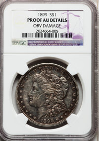 1899 $1 -- Obverse Damage -- NGC Details. Proof AU. NGC Census: (0/163). PCGS Population (3/221). Mintage: 846. Numismed...