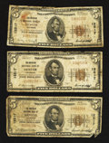 National Bank Notes:Colorado, Denver, CO - $5 1929 Ty. 1 The American NB Ch. # 12517, ThreeExamples.. ... (Total: 3 notes)