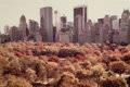 Photographs:Contemporary, RUTH ORKIN (American, 1921-1985). Autumn in New York, 1980.Chromogenic print. Image:12-1/2 x 18-1/2 inches (31.8 x 47.0...(Total: 2 Items)