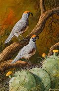 Fine Art - Painting, American:Contemporary   (1950 to present)  , TREVOR SWANSON (American, b. 1968). Two Quail. Oil on canvas. 18 x 12 inches (45.7 x 30.5 cm). Signed lower right: Tr...