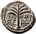 Ancients:Judaea, Ancients: Bar Kokhba Revolt (132 - 135 AD). AE small bronze (20mm,8.05 gm, 6h). ...