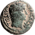 Ancients:Judaea, Ancients: Herod Philip (4 BC - 34 AD). Mint of Paneas. AE (20mm,6.94 gm, 1h)....