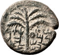 Ancients:Judaea, Ancients: Bar Kokhba Revolt (132 - 135 AD). AE middle bronze (27mm,9.30 gm, 6h). ...