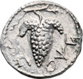 Ancients:Judaea, Ancients: Bar Kokhba Revolt (132 - 135 AD). AR zuz (19mm, 3.25 gm,6h). ...