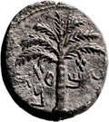 Ancients:Judaea, Ancients: Bar Kokhba Revolt (132 - 135 AD). AE middle bronze (23 X26mm, 13.94 gm, 6h). ...