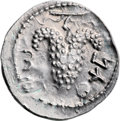 Ancients:Judaea, Ancients: Bar Kokhba Revolt (132 - 135 AD). AR zuz (20mm, 3.51 gm,6h). ...