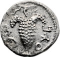 Ancients:Judaea, Ancients: Bar Kokhba Revolt (132 - 135 AD). AR zuz (18mm, 3.21 gm,6h). ...