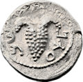 Ancients:Judaea, Ancients: Bar Kokhba Revolt (132 - 135 AD). AR zuz (20mm, 3.54 gm,7h). ...
