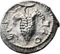 Ancients:Judaea, Ancients: Bar Kokhba Revolt (132 - 135 AD). AR zuz (19mm, 3.14 gm,6h). ...