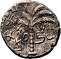 Ancients:Judaea, Ancients: Bar Kokhba Revolt (132 - 135 AD). AE middle bronze (25mm,11.27 gm, 6h)....