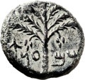 Ancients:Judaea, Ancients: Bar Kokhba Revolt (132 - 135 AD). AE middle bronze (24mm,12.50 gm, 6h). ...