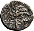 Ancients:Judaea, Ancients: Bar Kokhba Revolt (132 - 135 AD). AE middle bronze (27mm,9.12 gm, 6h). ...