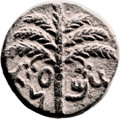 Ancients:Judaea, Ancients: Bar Kokhba Revolt (132 - 135 AD). AE middle bronze (21mm,11.03 g, 6h). ...